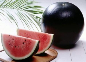 Densuke water melon