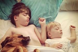 pet kids