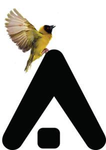 logo_proplusma arkitektones