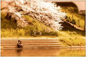 spring_love_by_jyoujo
