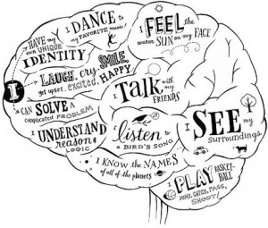http://www.k-mag.gr/wp-content/uploads/2015/11/brain-emotions1-300x255.jpg